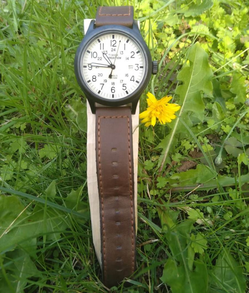 timex expedition in grass
