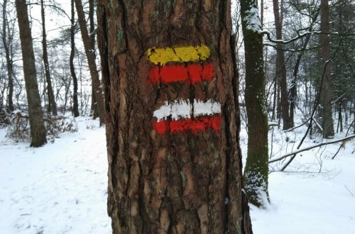 Winter hiking blazes